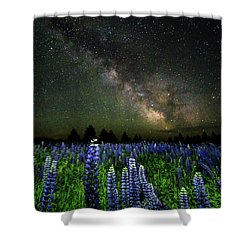 Milky Way And Lupine Shower Curtain by Cody Gould