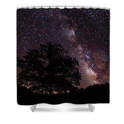 Milky Way And The Tree Shower Curtain