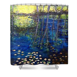 Mill Brook Kingston N H Shower Curtain