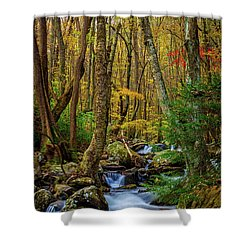 Mill Creek In Fall #1 Shower Curtain