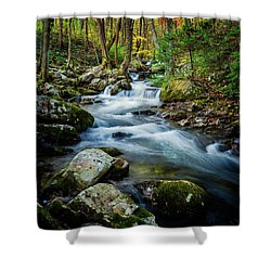 Mill Creek In Fall #3 Shower Curtain