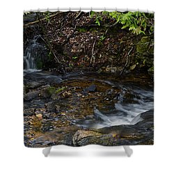 Mill Creek Shower Curtain