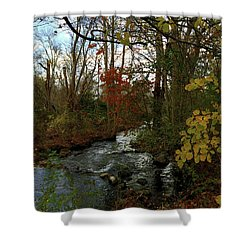 Mill Creek, Sandwich Massachusetts Shower Curtain
