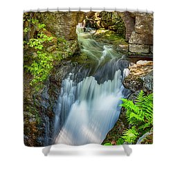 Mill Remnants Shower Curtain