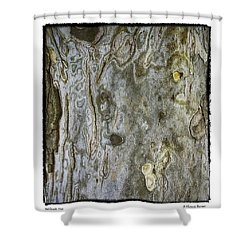 Millbrook Tree Shower Curtain by R Thomas Berner