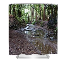 Miller Grove Shower Curtain