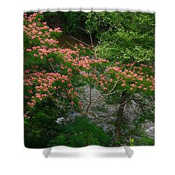 Mimosa On The Dan River Shower Curtain