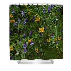 Mimulus And Vetch Shower Curtain by Doug Herr