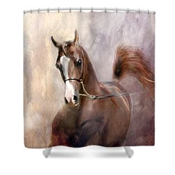 Mind Fed With Hope Shower Curtain by Dorota Kudyba