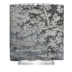 Mind Of Winter Shower Curtain