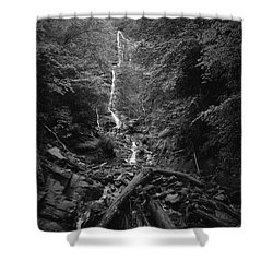 Mingo Falls Shower Curtain