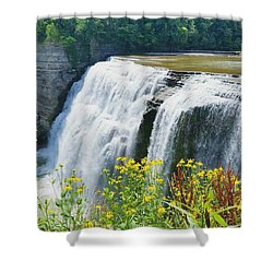 Shower Curtain featuring the photograph Mini Falls by Raymond Earley