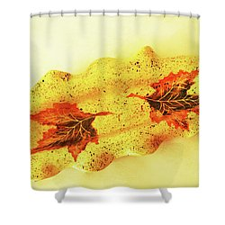 Shower Curtain featuring the photograph Mini Long Bowl by Itzhak Richter