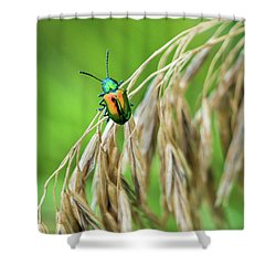 Shower Curtain featuring the photograph Mini Metallic Magnificence  by Bill Pevlor