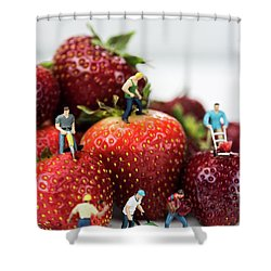 Miniature Construction Workers On Strawberries Shower Curtain