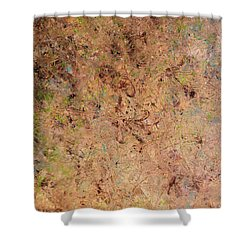 Shower Curtain featuring the painting Minimal 7 by James W Johnson