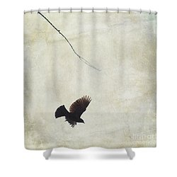 Shower Curtain featuring the photograph Minimalistic Bird In Flight  by Aimelle