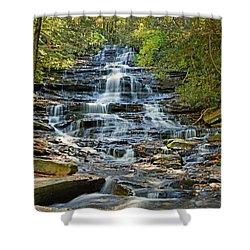 Minnehaha Falls Shower Curtain