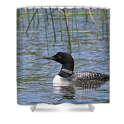 Shower Curtain featuring the photograph Minnesota State Bird by Penny Meyers