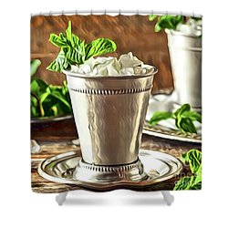 Mint Julep Double Shower Curtain