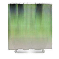 Mint Slice Shower Curtain