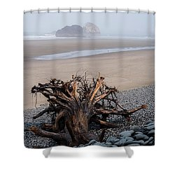 Minus Tide At Arch Cape Shower Curtain