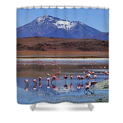 Shower Curtain featuring the photograph Mirage by Skip Hunt