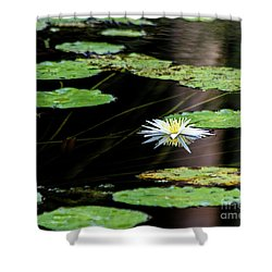 Mirror Lily Shower Curtain
