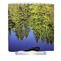 Mirror Mirror-2 Shower Curtain