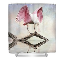 Mirror, Mirror,  Shower Curtain by Brian Tarr