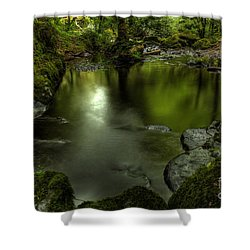 Mirror Pool Shower Curtain