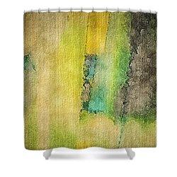 Mirror Shower Curtain by William Wyckoff