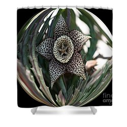 Captured Five-point Star Succulent Shower Curtain