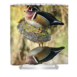 Mirrored Wood Duck Shower Curtain