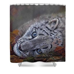 Mirucha In Fall Shower Curtain