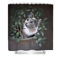 Mischief In The Money Tree Shower Curtain