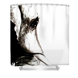 Miss Ellie Shower Curtain