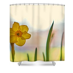 Miss Yellow Shower Curtain