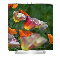 Mission Bell Poppies Shower Curtain