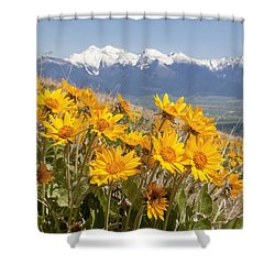 Mission Mountain Balsam Blooms Shower Curtain by Jack Bell