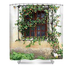 Mission Window With Yellow Flowers Vertical Shower Curtain by Carol Groenen