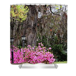 Mississippi Charm Shower Curtain