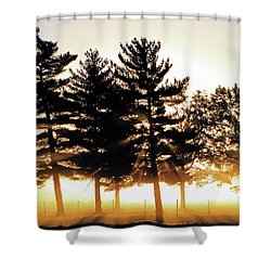 Missouri Tree Line Shower Curtain