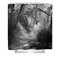 Mist In The Jungle Shower Curtain