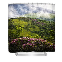 Rhododendrons - Roan Mountain Shower Curtain