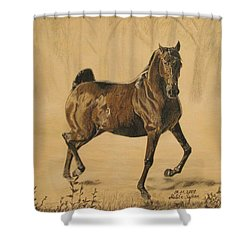 Mistical Horse Shower Curtain by Melita Safran