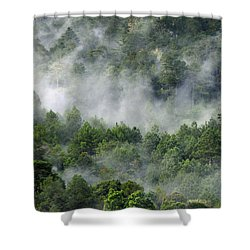 Mistico De San Jose De Pacifico Shower Curtain by Skip Hunt