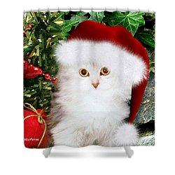Mistletoe At Christmas Shower Curtain by Morag Bates