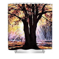 Shower Curtain featuring the painting Mists Of Time  by Valerie Anne Kelly