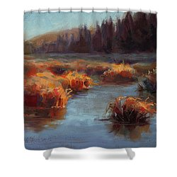 Shower Curtain featuring the painting Misty Autumn Meadow With Creek And Grass - Landscape Painting From Alaska by Karen Whitworth